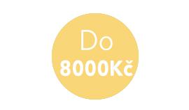 Do 8000 Kč
