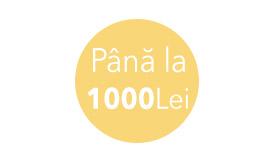 Până la 1000 Lei