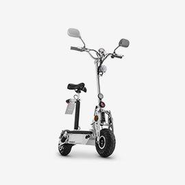 Električni skuterji in skiroji